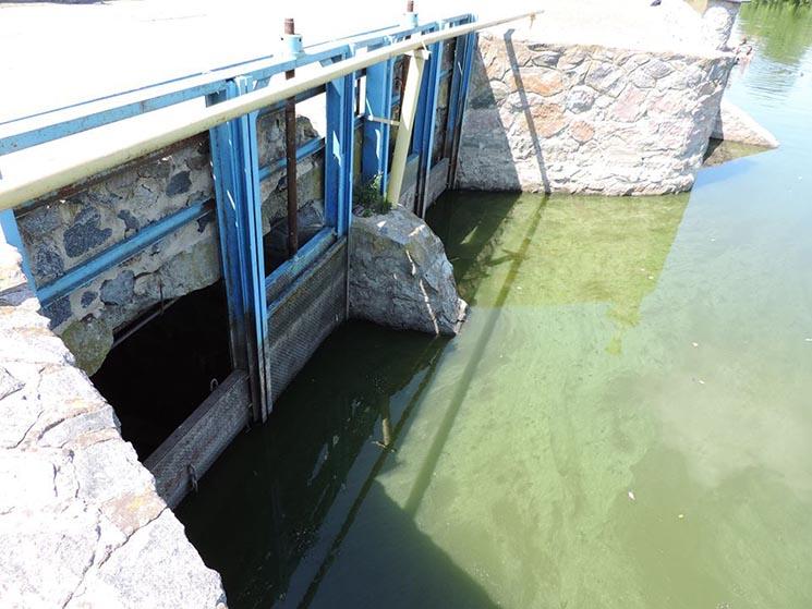 В річці Рось продовжує стрімко міліти