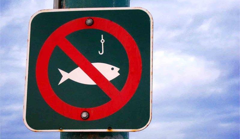 заборона на вилов риби в зимувальних ямах