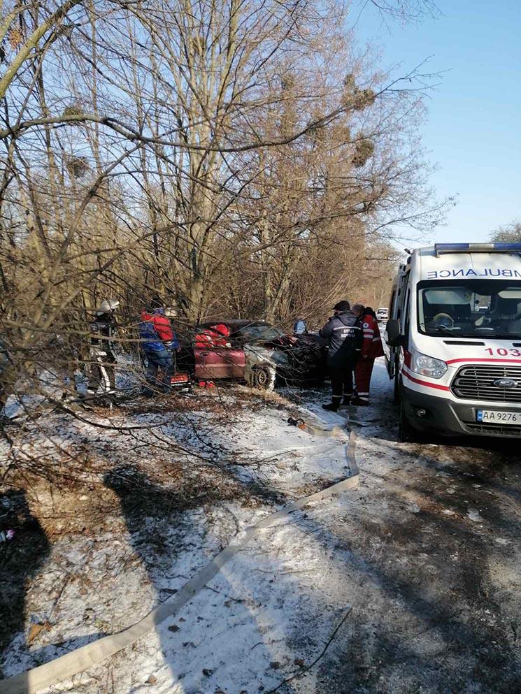 ДТП на Білоцерківщині: водій не впорався з керування і зіткнувся з деревом
